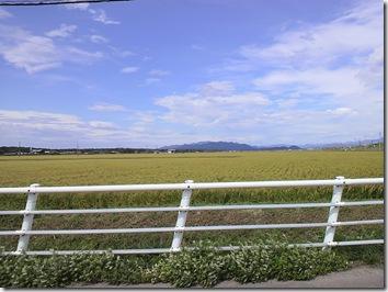 岩船地域の田んぼと青空